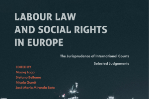 Labour law and social rights in Europe, M. Łaga